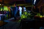 Shookup at Fisherman's Village Music Festival (Photo by Christine Mitchell)
