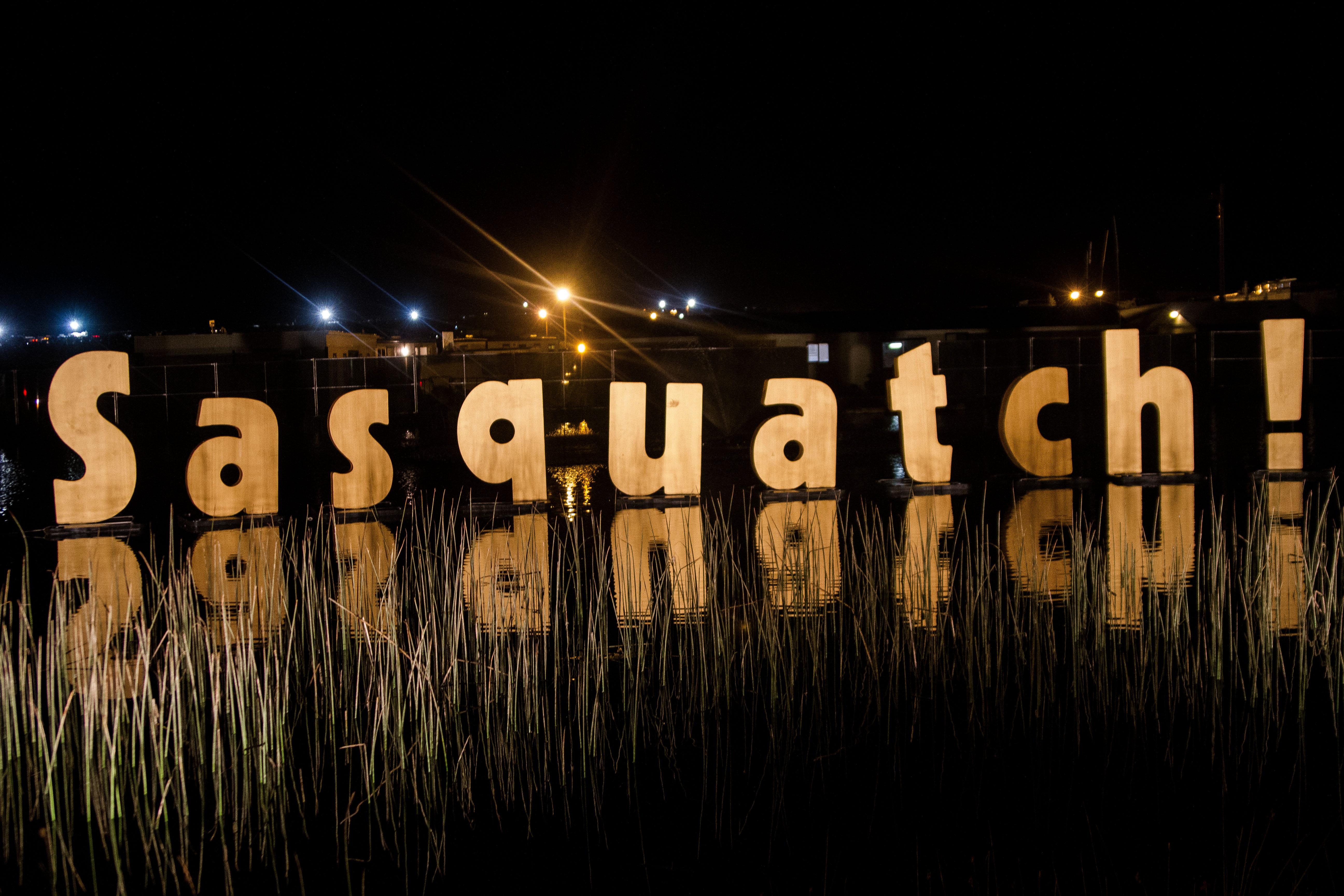 Sasquatch! 2013 Day 4: Photos Xander Deccio