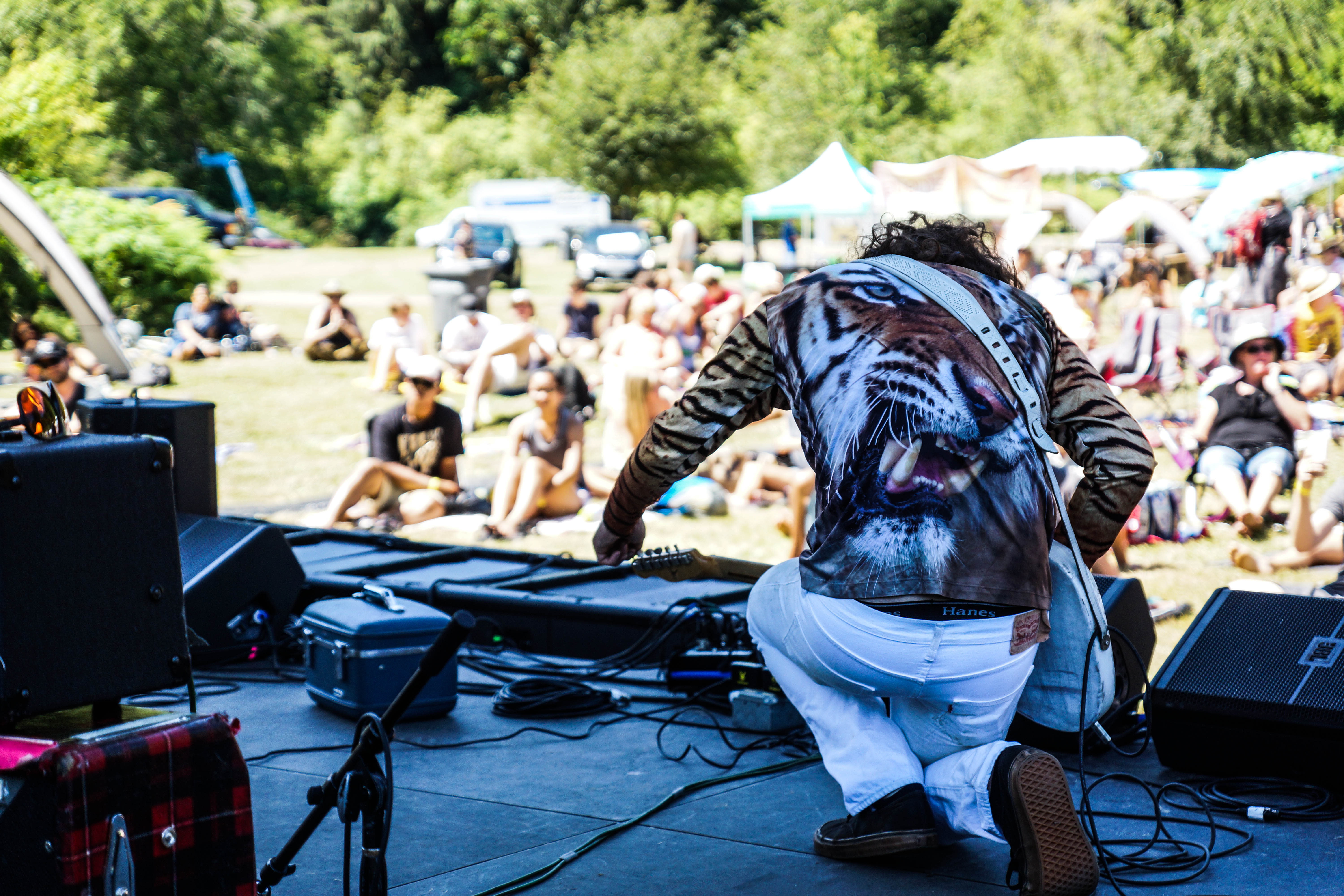 Timber! 2014 (Photo by Greg Roth)