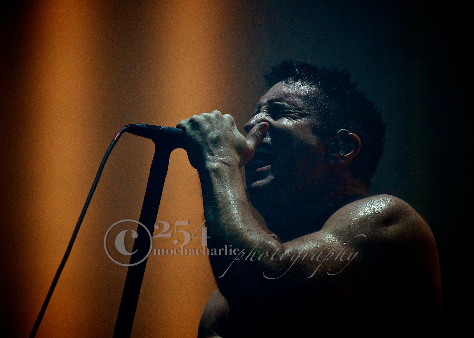 Nine Inch Nails at White River Ampitheatre (Photo by Mocha Charlie)